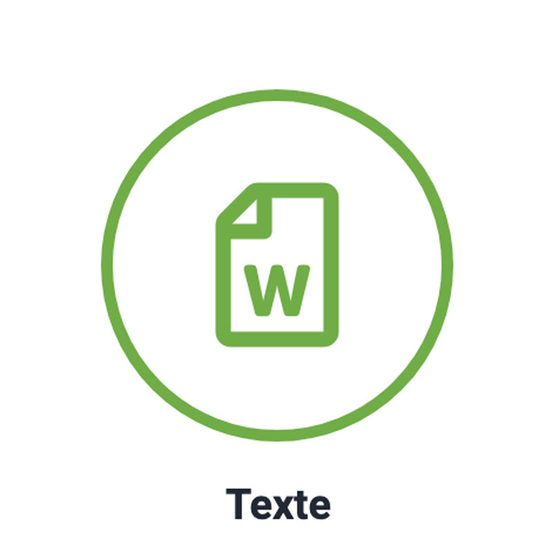 Texte Icon